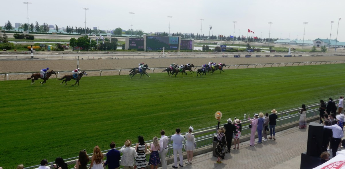 horse race at Woodbine Racetrack - 2018 Greenwood Stakes