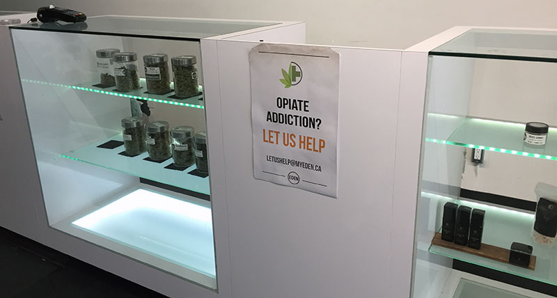 Counter at Eden pot shop