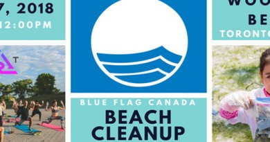 July 27: Yoga and beach cleanup at Woodbine