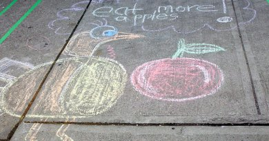 Apple Fest chalk drawing