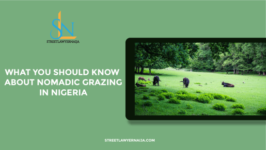 What You Should Know About Nomadic Grazing in Nigeria