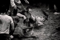 Two of the aloitadores deal with the head and cut the involved the mane.