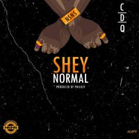 Download CDQ - Shey Normal (Prod .Philkeyz) @cdqolowo