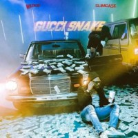 "Wizkid   ft. Slimcase-  ""Gucci Snake"""