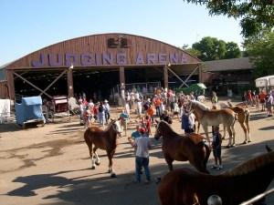 MN State Fair 2005  12
