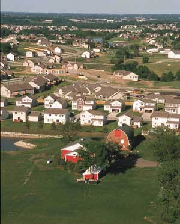 Dakota County Farmland