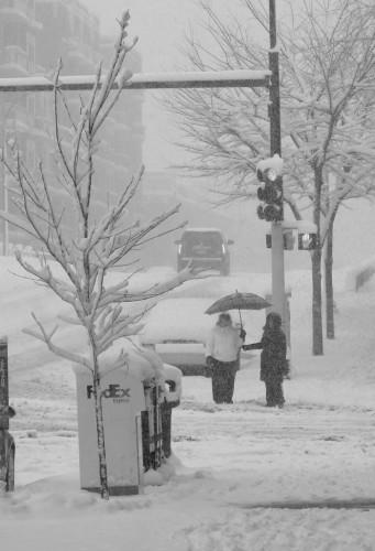 Snow Image 2