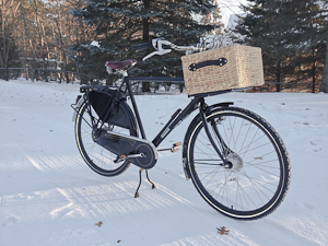 Workcycles OPA dutch bicycle