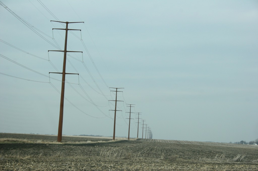 Newly-erected power lines, part of the Cap X2020 transmission line project northwest of Morgan along Minnesota State Highway 67, run seemingly into forever.