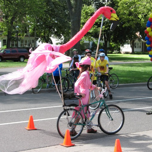 flamingo_bike