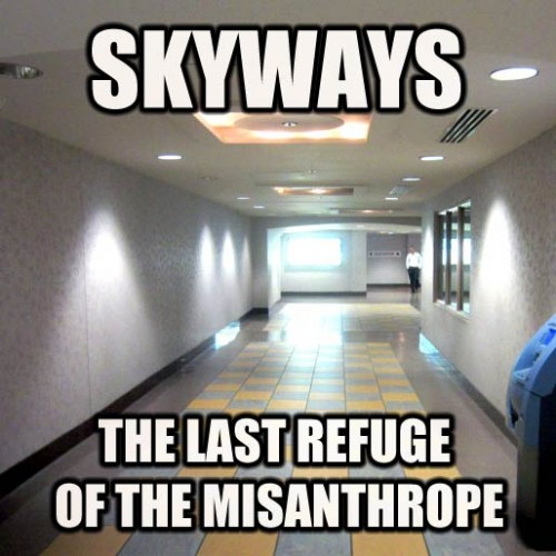 skyway-meme