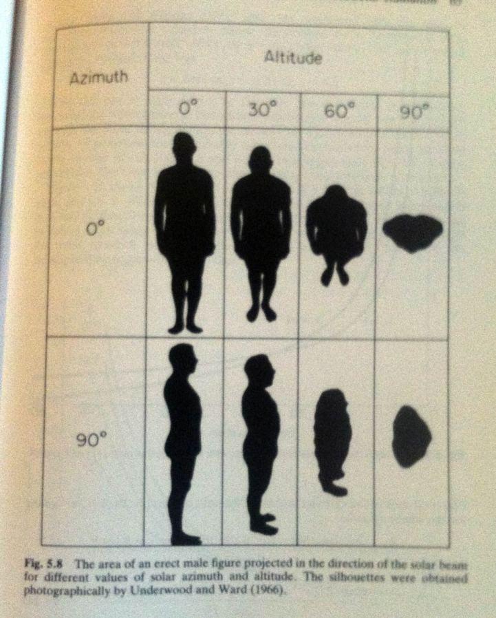 sunbeam-human-body