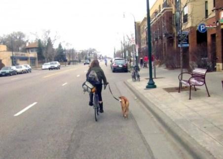 biking-with-dog