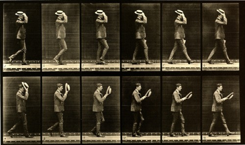 walking-muybridge-1