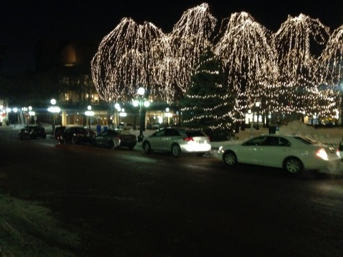 Rice park trees, lit with long lines of Christmas lights shower the background, while a while sedan parks in a metered spot on the street. The road is empty in the foreground, and a parking space is available in the far left of the picture, just before an intersection.