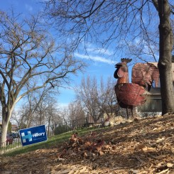 A metal rooster sculpture next to a Hillary for President lawn sign