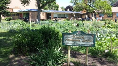 Bancroft Community Garden
