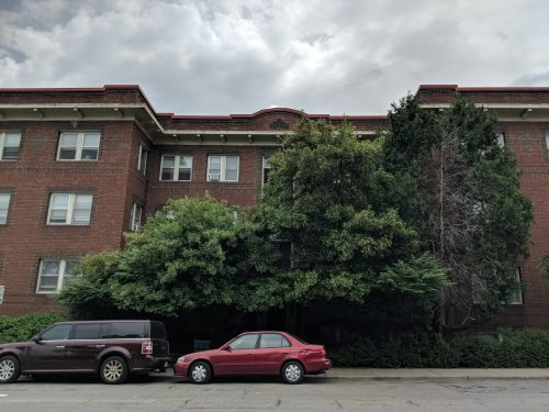 Some trees sit in front of what is obviously a large apartment building