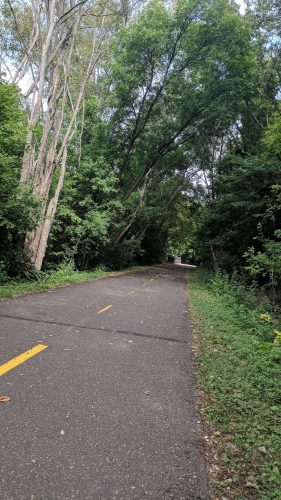 a 2-way bike path lined thickly by trees. you can smell the green looking at it!