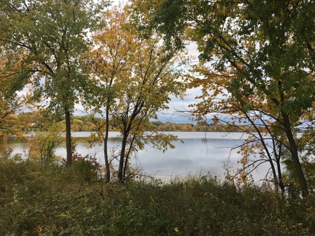 Lake View Toward South
