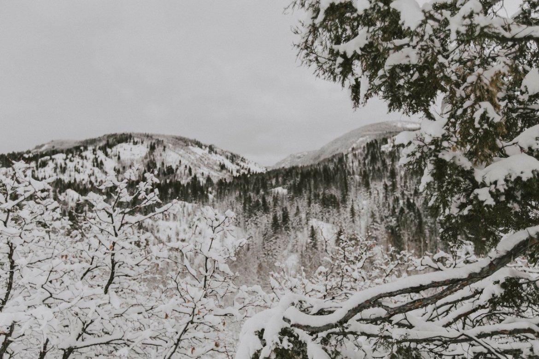Snowy Colorado Mountains