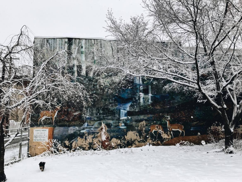 Snowy day in a Philadelphia park || streetsandstripes.com