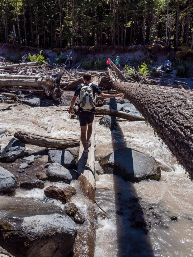 Ramona Falls Hike Mount Hood 11
