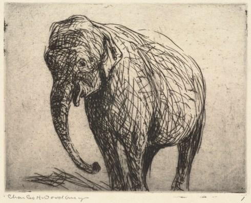 Woodbury elephant BPL