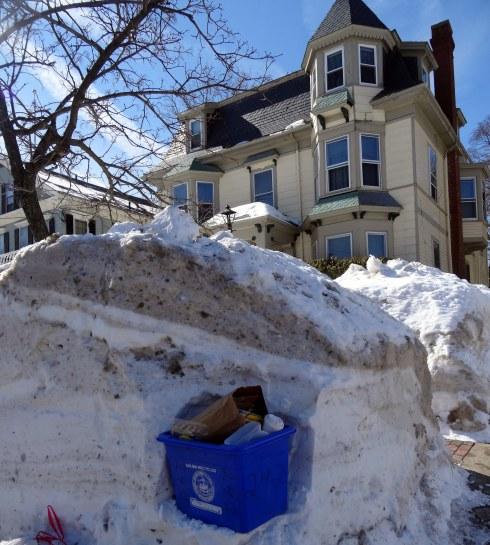 Frozen February 029