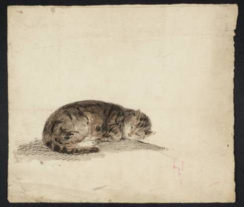 A Sleeping Cat circa 1796-7 by Joseph Mallord William Turner 1775-1851
