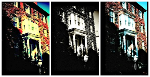 filtered-chestnut-street-collage