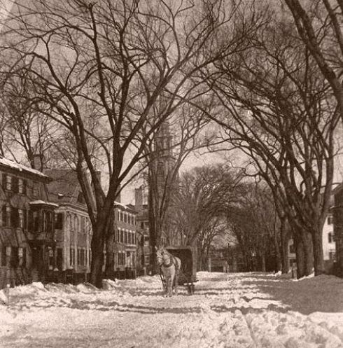 snow-chesnut-st-2-harvard
