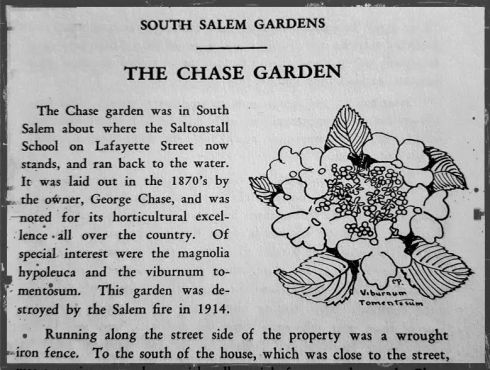 Chase Old Salem Gardens 2