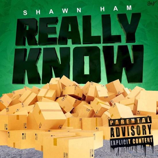 [Single] Shawn Ham 'Really Know'