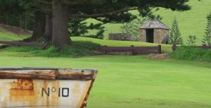 Norfolk Island countryside