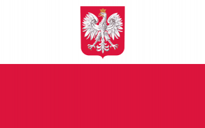 Polish Slang- Street Talk Savvy