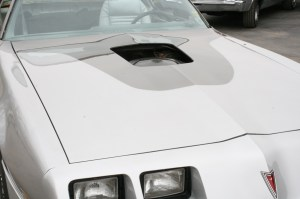 1.The 10th Anniversary Trans Am is the only TA that has a 2-tone paint scheme. The unique part is that the hood bird covers the transition edges.