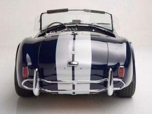 Cobra_rear