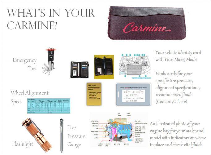 complete-customized-carmine-organizer
