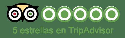 Tripadvisor 5 estrellas para Tours de Nueva York para Grupos Grandes