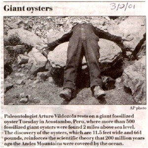 Oyster - Giant