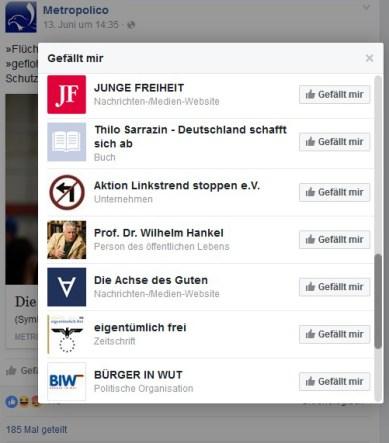 Likes der Facebook-Seite von Metropolico