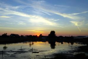Knoblauchsland Sunset