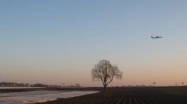 Knoblauchsland am Morgen