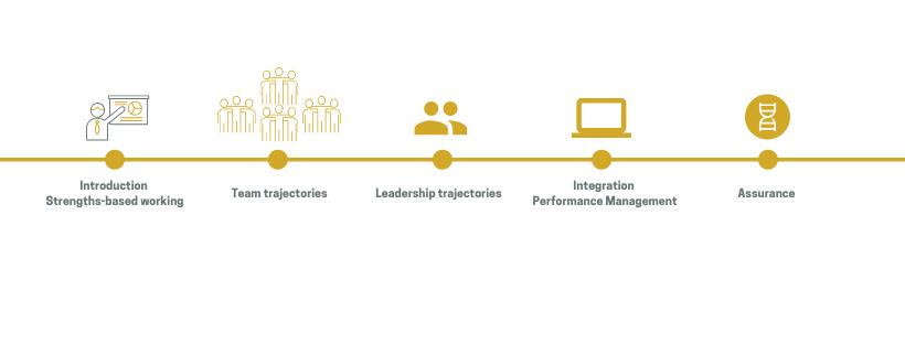 Strengthsfinder Organizational trajectory