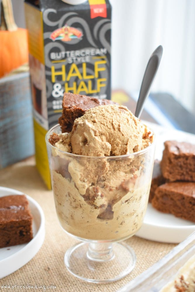 Gingerbread Ice Cream: Easy homemade ice cream filled with gingerbread spice flavor and pieces of real gingerbread! | stressbaking.com