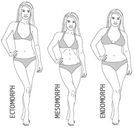 Different body types of women