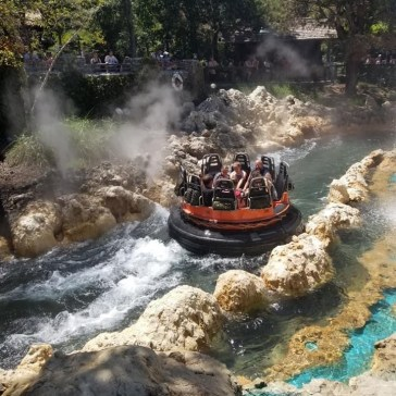 Grizzly bear rapids