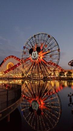paradise pier night mickey fun wheel