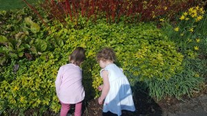 Jess and Molly looking at leaves